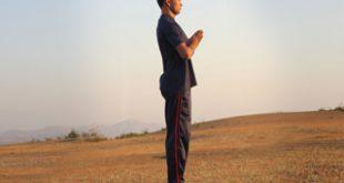sun-salutation-step